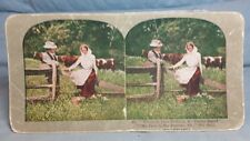 """Antique Stereoview Card """"No. 89 Where Is Your Fortune My Face Is My Fortune Sir"""""""