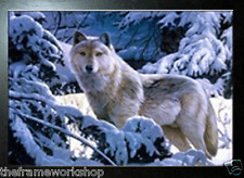 BLACK FRAMED WOLF IN SNOW - 3D MOVING PICTURE POSTER 400mm X 300mm (NEW)