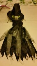 witches halloween dress and hat black and green age 9-10