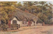 A.R. Quinton, The Cat & Fiddle Inn New Forest Salmon 3226 Postcard, B545
