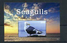 Guyana 2015 MNH Seagulls I 1v S/S Birds Wester Gull