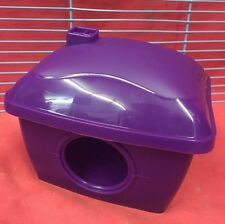 Hamster House Plastic 5.5 X 4.5 Inches PURPLE Dwarf Hamster Gerbil Mouse