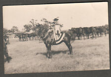 Hungary c 1949 RPPC photo post card man on horse cape hat other horses