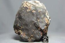 NWA 10700 LL4-6 Chondrite Meteorite 628 gram Main Mass
