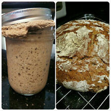 Authentic Naturally Grown Organic Sourdough Bread Starter Express Shipping