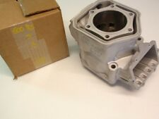 Ski Doo 600 RS New Reman. Snowmobile Engine Cylinder XP REV MXZ X 623480