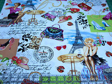 3 Yards Quilt Cotton Fabric - Timeless Treasures J'Adore Paris PinUps Collage