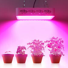 High bright 300W led grow lamp indoor commercial plants veg supplement lighting