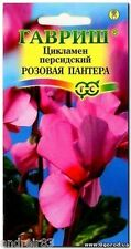 "Seeds of Cyclamen persicum ""The Pink Panther"" TM ""Gavrish"" - 3 seeds Цикламен"