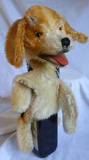Steiff Handpuppe Beagle Mimic Biggie 1958 Mohairplüsch mit Knopf im Ohr