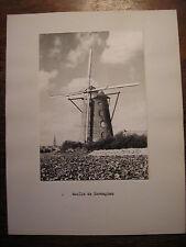 Photo noir et blanc MOULIN à vent de Flandre belge  : TERDEGHEM - années 1950