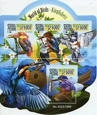 Sierra Leone 2015 MNH Kingfishers World of Birds 4v M/S Kingfisher Stamps