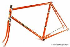 VINTAGE Race bike w Rossin decals Italy Lugged Steel Gipiemme dropouts Frame set