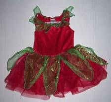GYMBOREE STRAWBERRY FAIRY COSTUME 18-24 mo HALLOWEEN DRESS UP