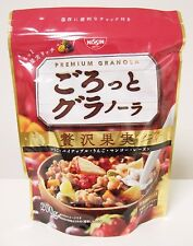 Nissin Premium Granola Japanese Sereal Rich Fruits 200g Grain Maple Syrup Japan