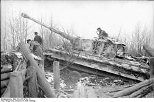 German Army Panzer Tiger Tank Russia 1943 World War 2 Reprint Photo 6x4 Inch