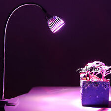 5W LED RBW Grow Light Desk Flexible Clip On Clamp Lamp Hydroponic Plant Indoor