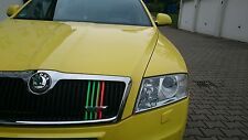 Performance strisce adesivi sticker RS Skoda Oktavia RADIATORE GRILL NEON 10stc