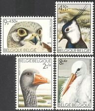 Belgium 1972 Kestrel/Hawk/Stork/Goose/Lapwing/Birds/Raptors/Nature 4v set b2835