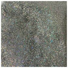 SB HOLOGRAPHIC Silver Fine Dust Glitter for Nail Art Eye Shadow Wine Glass 5g