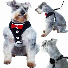 Red Bow Tie Black & White Tuxedo Suit Adjustable Harness for Dogs MEDIUM