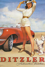 DITZLER AUTOMOTIVE FINISHES SEXY GIRL poster tall brunette car dog 24x36 -RW0