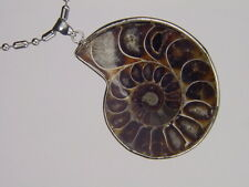BUTW- Silver Ammonite nautiloid fossil  61 mm pendant necklace jewelry 6147K