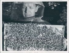 Beekeeper With Comb of Honey & Cluster of Bees Press Photo