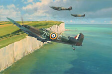 Robert Taylor Spitfire print This Sceptred Isle signed 10 Battle of Britain vets