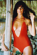 Caroline Munro Busty In Red Swimsuit 11x17 Mini Poster