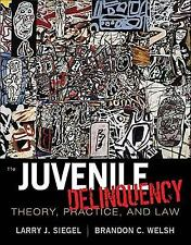Juvenile Delinquency Theory Practice And Law by Siegel