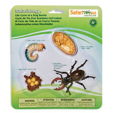 Life Cycle Of A Stag Beetle Figures Safari Ltd NEW Toys Educational Figurines