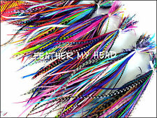 100 Pc Whiting Feather Extension  Short /  Medium Length Wholesale Real Feathers