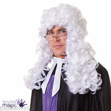 Adult Judge Barrister Lawyer Law Court Fancy Dress Costume Long White Curly Wig