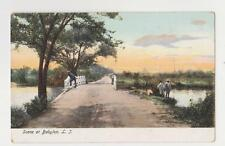 Babylon,Long Island,NY.Dirt Road Scene,Suffolk County,c.1901-06