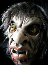 Voodoo Zombie Man Undead Scary Adult Latex Mask & Wig