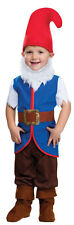 BOYS TODDLER SNOW WHITE DWARF DWARF FANCY DRESS COSTUME OUTFIT & BEARD 2-4 NEW