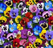 Elizabeth Studio Lovely Pansies Pansy Red Blue Yellow Purple Pink Floral Fabric