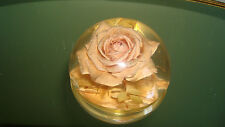 Antique/Vtg W. Rolfe Lucite Rose Paperweight~Lovely Pinky Peach Rose