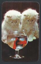 #920.495 Blank Back Swap Card -MINT- Kittens watch goldfish in a glass