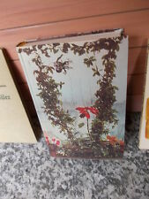 Pflanzen und Blumen im Haus, von Ludwig Koch-Isenburg, aus dem Verlag Deutsche B