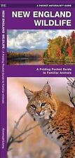 Pocket Naturalist Guide: New England Wildlife : A Folding Pocket Guide to...