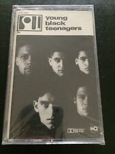 1991 YOUNG BLACK TEENAGERS Album Cassette Tape Sealed Rap/Hip Hop