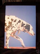 Pet Shop Boys 1989 Britain Asia Tour Book Program NEAR MINT CONDITION