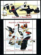 Somaliland cindarella MNH Birds Ducks. x11592