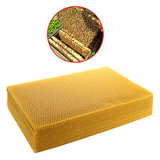208*418mm, 10 PCS Apis Mellifera Ligustica Comb Foundation Honeycomb Beekeeping