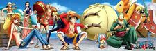 "[HAKSAN] 1000 Piece Jigsaw Puzzle ""One Piece - New World "" / HS752-725"