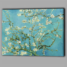 Blu uovo d'anatra Blossom TREE CANVAS A2 Grande Wall Art Picture REGALO Almond FOGLIE