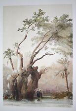 David Roberts 1849 H/C 1st Folio HOLY TREE OF METEREAH EGYPT
