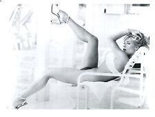 Samantha Fox Leggy 8x10 photo C6608